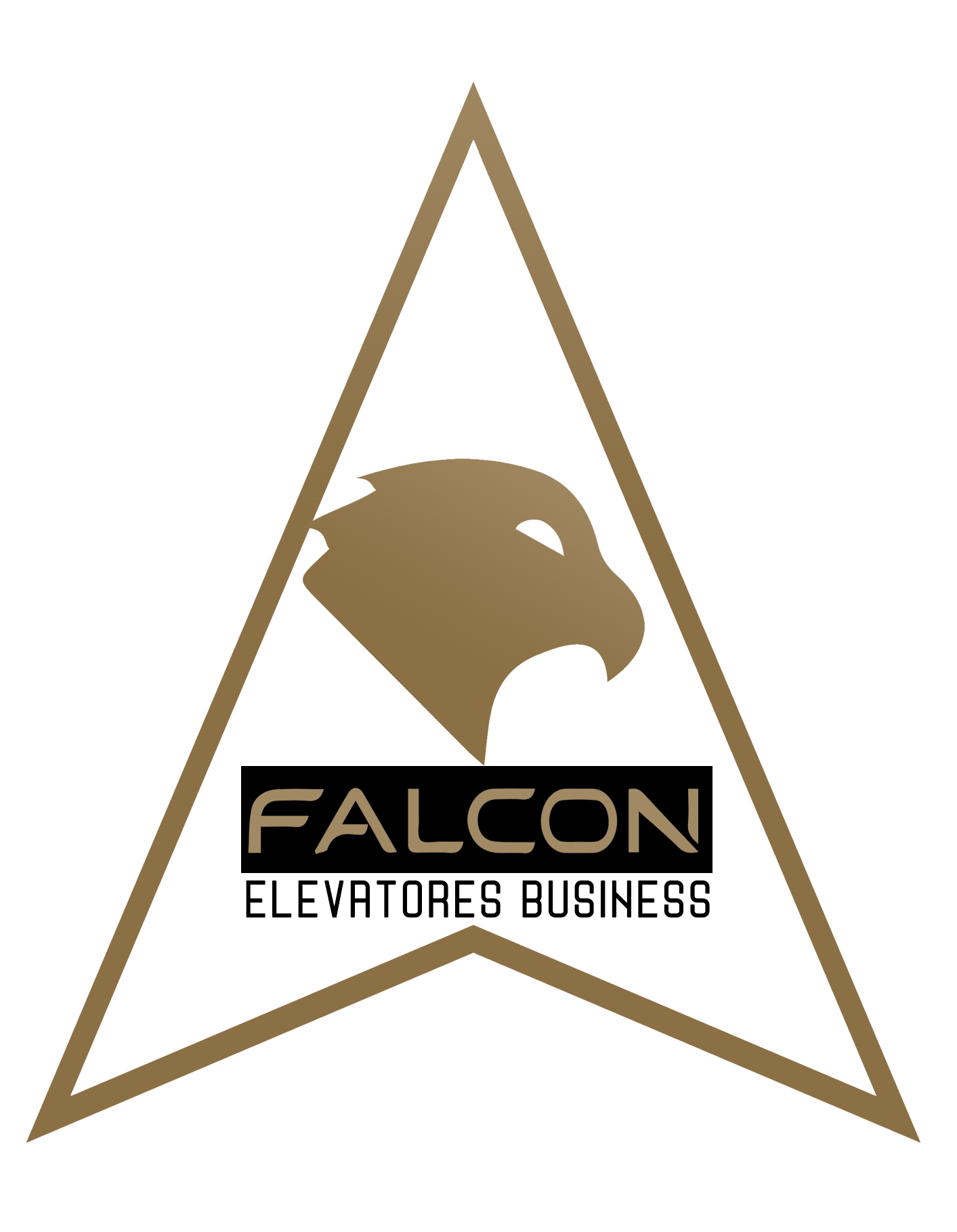 http://aasansor.ir/images/product/3_type_of_parts/5_reil/falcon/falcon1.png